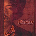 V The Spirit Lives On - The Music Of Jimi Hendrix Revisited Vol II