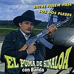 El Puma De Sinaloa Entre Pase Y Pase