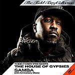 Todd Terry Samba (20th Anniversary Mixes)