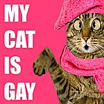 James Thompson My Cat Is Gay