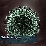 Shiloh Antigen
