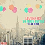 Levi Kreis So Much Better - The Us Mixes