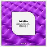 Wehbba Common Ground / Coqueluche