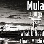 Mula What U Need (Feat. Muchi)