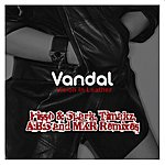 Vandal Vision In Leather (Remixes)