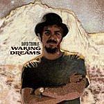 David Thomas Waking Dreams