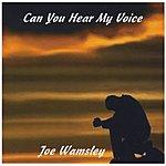 Joe Wamsley Can You Hear My Voice