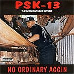 PSK-13 No Ordinary Aggin (The Underhanded Bandit)