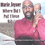 Mario Joyner Where Did I Put Those Bits