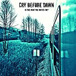 Cry Before Dawn Is This What You Waited For?