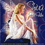 Shiva Un Film