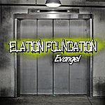 Evangel Elation Foundation
