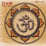 Pravin Mani Ohm