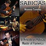 Sabicas El Niño De Las Habicas: Master Of Flamenco