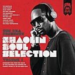 Mel The Rza Presents Shaolin Soul Selection: Vol. 1