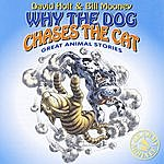 David Holt Why The Dog Chases The Cat: Great Animal Stories