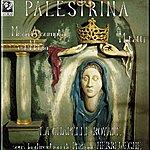 Philippe Herreweghe Palestrina: Missa Assumpta Est Maria & Motetti