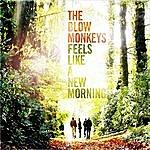 The Blow Monkeys Feels Like A New Morning