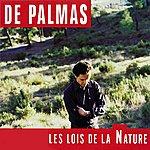 De Palmas Les Lois De La Nature