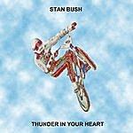 Stan Bush Thunder In Your Heart