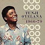 Tunji Oyelana A Nigerian Retrospective 1966-79