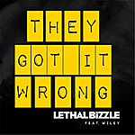 Lethal Bizzle They Got It Wrong (Feat. Wiley)