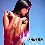 Tantra Tantra: Lounge Et Chill Out, Coffret Bien-Etre De Musique Sensuelle Et Sexe Tantrique