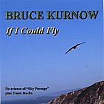 Bruce Kurnow If I Could Fly