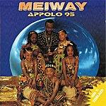 Meiway Appolo 95 (400% Zoblazo)