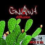 Gnawa Diffusion Shock El Hal