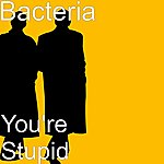 Bacteria You're Stupid