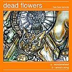 Dead Flowers Wonderwheel