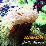 Jasmon Gentle Flowers