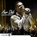 Amr Diab Amr Diab: Greatest Hits 2013
