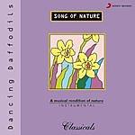 Ronu Majumdar Song Of Nature - Dancing Daffodils