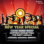 Karunesh New Year - Soothing Lounge Music For Party Animals