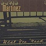 David Martinez What You Need