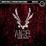 Angel Hoodie Tracks  (3-Track Single)