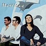 Mestisay Mestisay