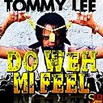 Tommy Lee Do Weh Mi Feel