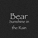 Bear Sunshine In The Rain