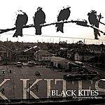 Black Kites Advancement To Ruins