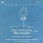Ravindra Sathe Shiv Upasana, Vol. 1