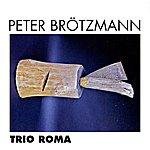 Peter Brötzmann Trio Roma