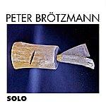 Peter Brötzmann Solo