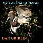 Dan Gribbin My Louisiana Heron