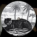Tigerskin Try The Impossible Ep