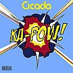 Cicada Ka-Pow!