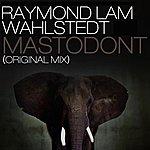Raymond Lam Mastodont (Original Mix)