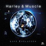 Harley & Muscle Life Evolution